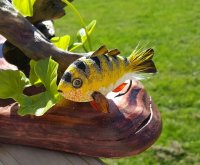 Perch Display Fly